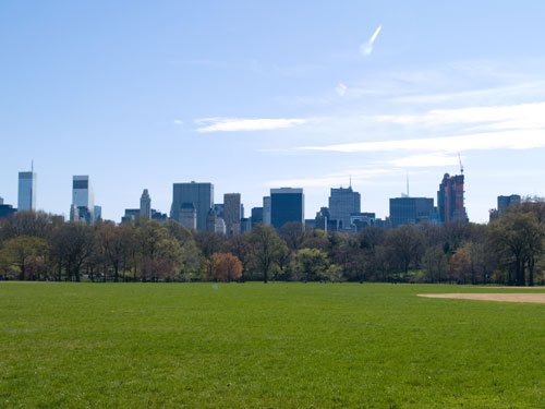 New York skyline from Central Park